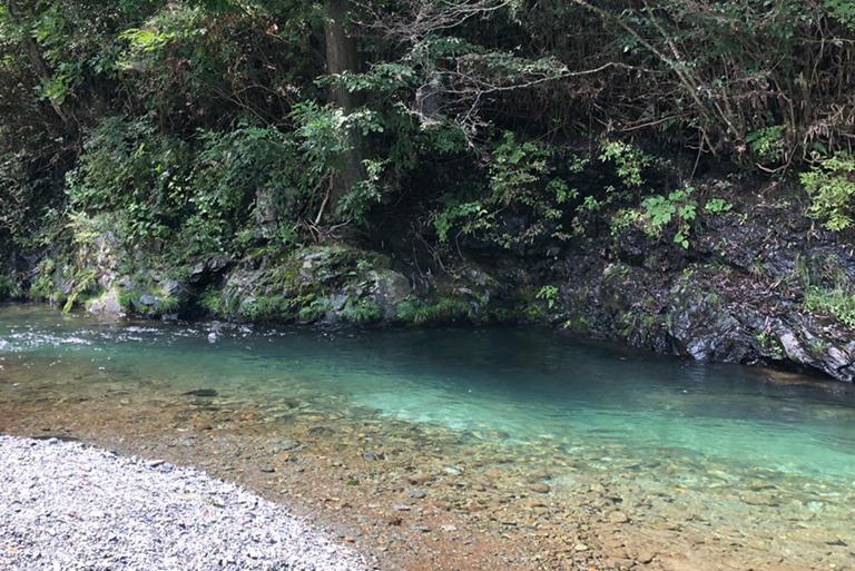 ホテル目の前の鮎川